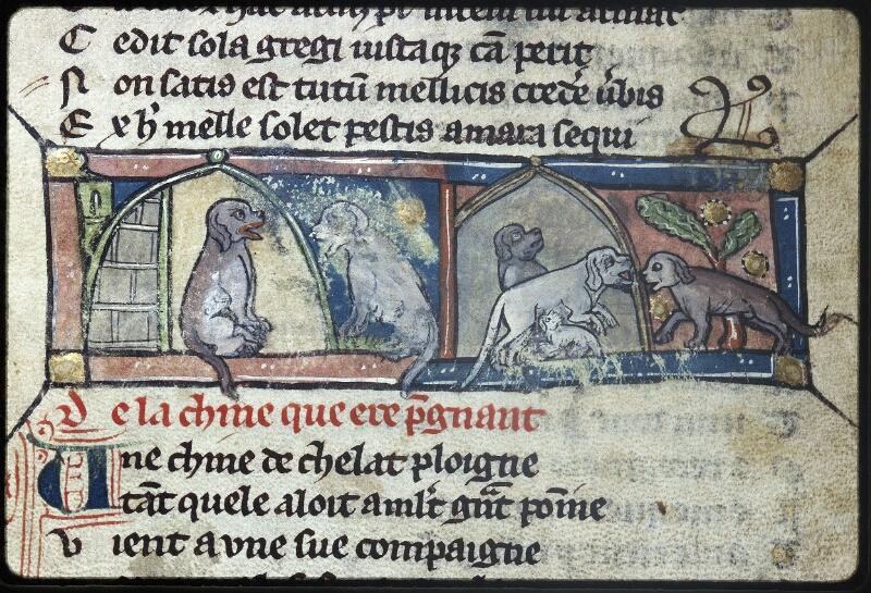 Lyon, Bibl. mun., ms. Palais des Arts 057, f. 013v
