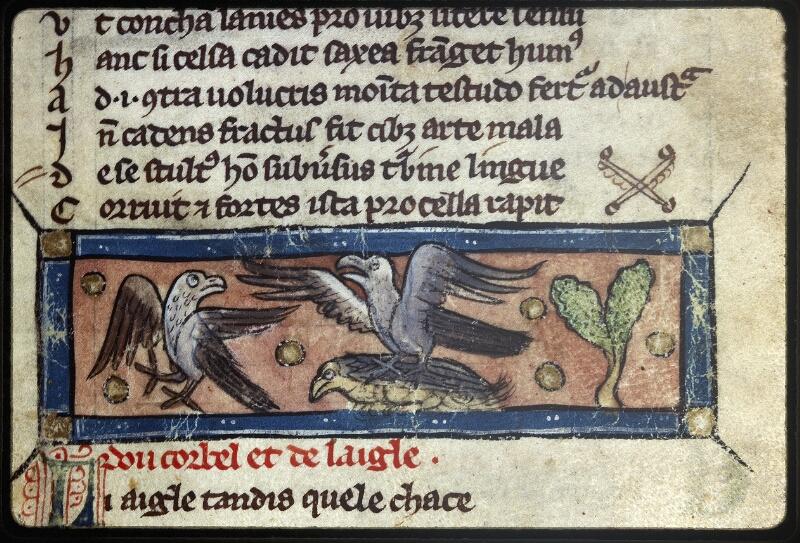 Lyon, Bibl. mun., ms. Palais des Arts 057, f. 020