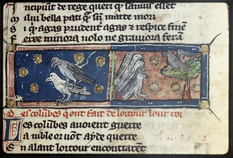 Lyon, Bibl. mun., ms. Palais des Arts 057, f. 032