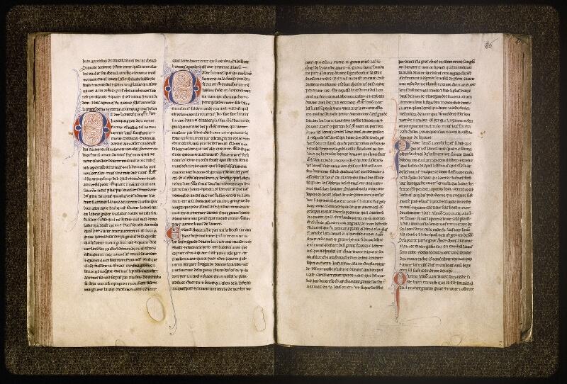 Lyon, Bibl. mun., ms. Palais des Arts 077, f. 084v-085 - vue 2