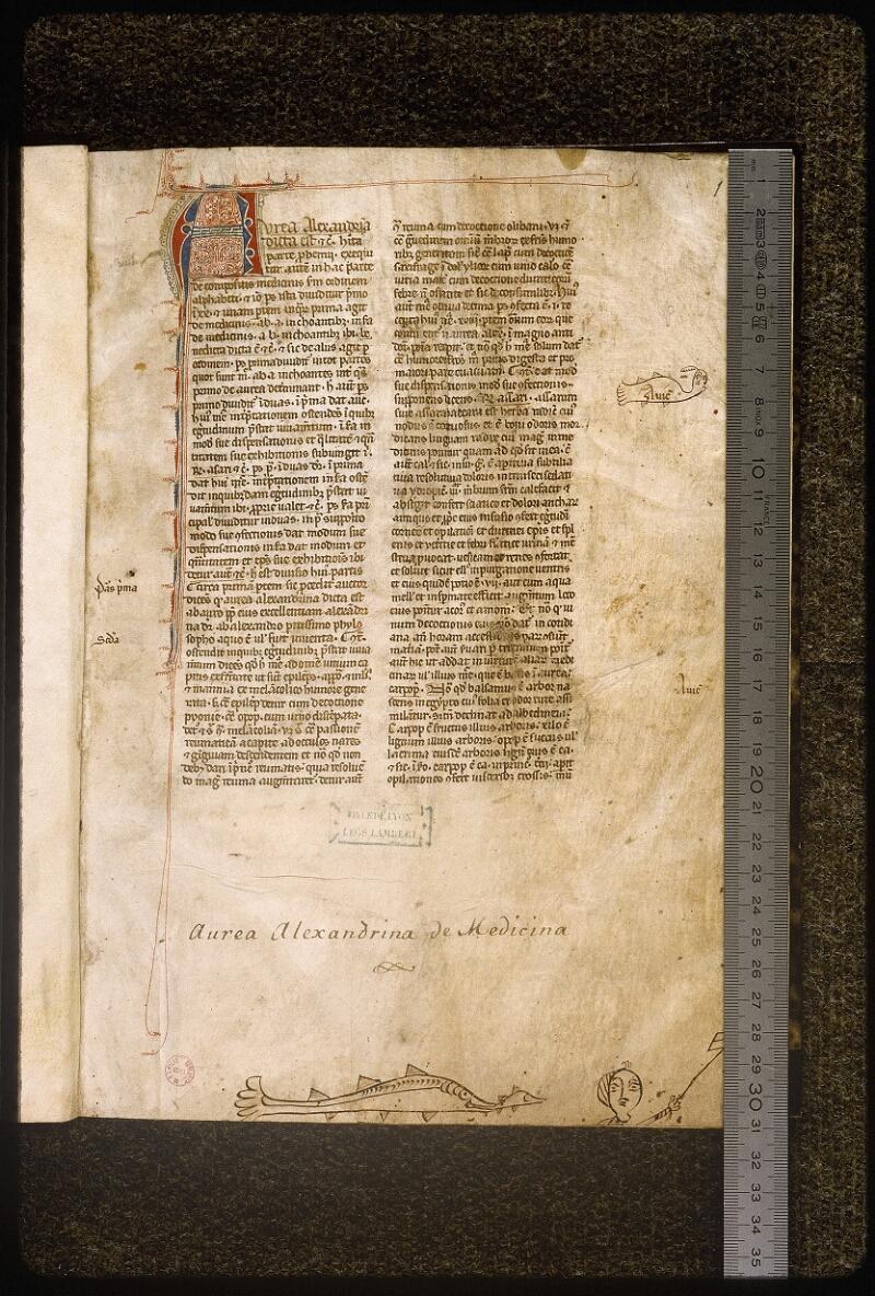 Lyon, Bibl. mun., ms. Palais des Arts 321, f. 001 - vue 1