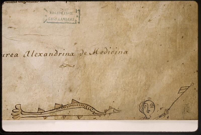 Lyon, Bibl. mun., ms. Palais des Arts 321, f. 001 - vue 4