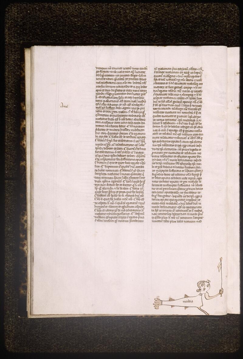 Lyon, Bibl. mun., ms. Palais des Arts 321, f. 008v - vue 1