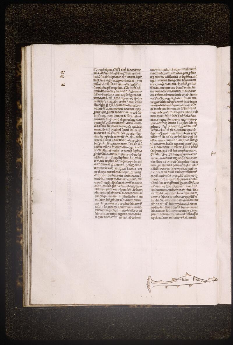 Lyon, Bibl. mun., ms. Palais des Arts 321, f. 016v