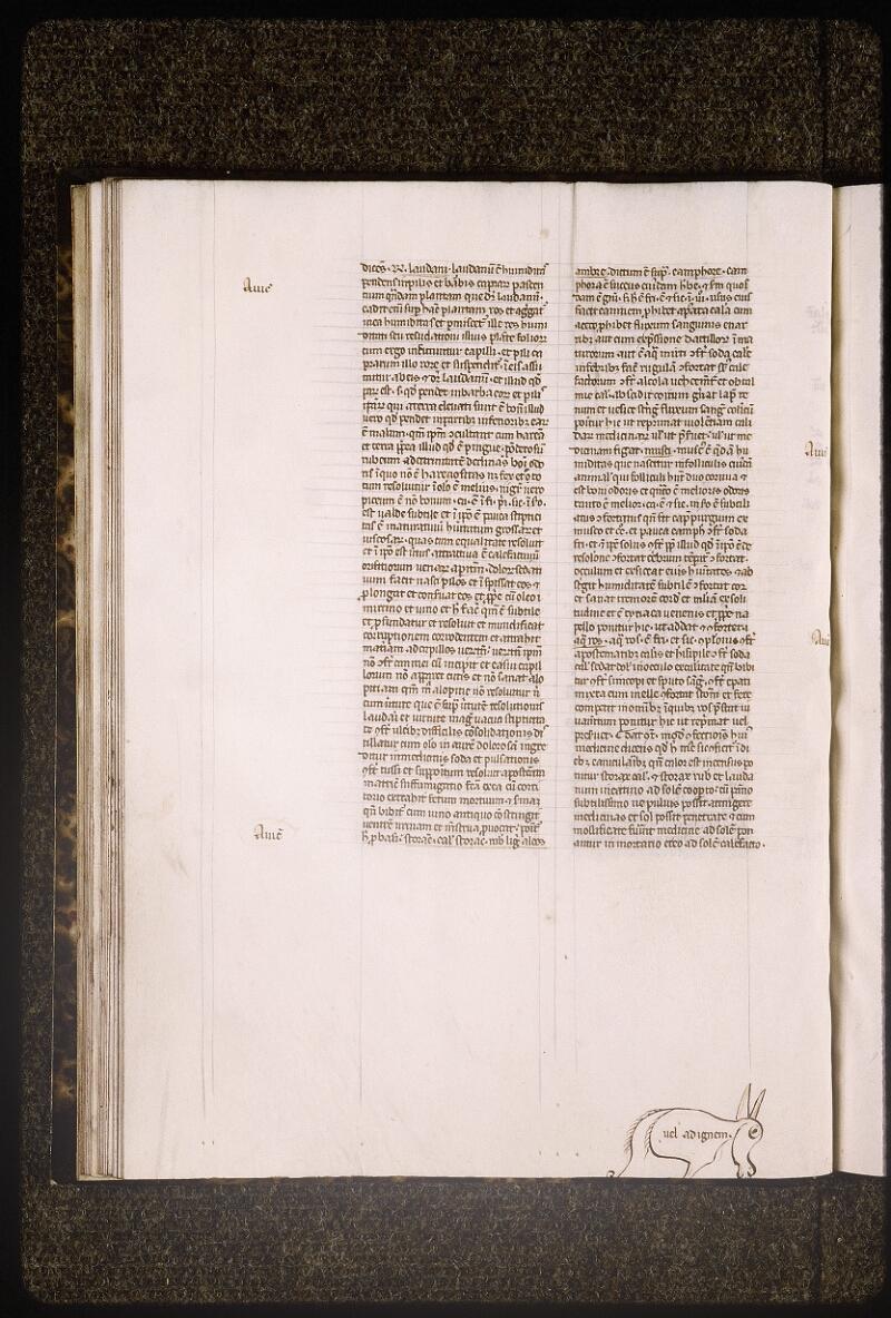 Lyon, Bibl. mun., ms. Palais des Arts 321, f. 024v - vue 1