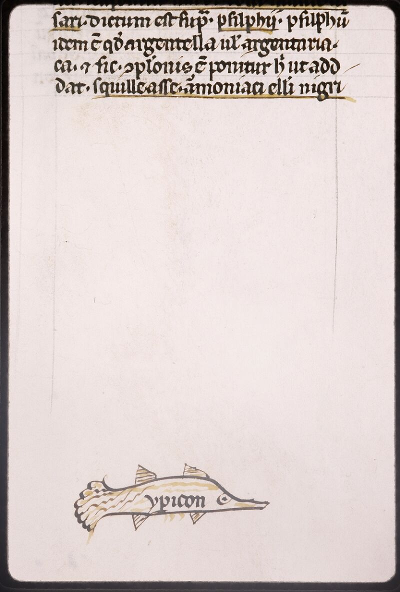 Lyon, Bibl. mun., ms. Palais des Arts 321, f. 072v