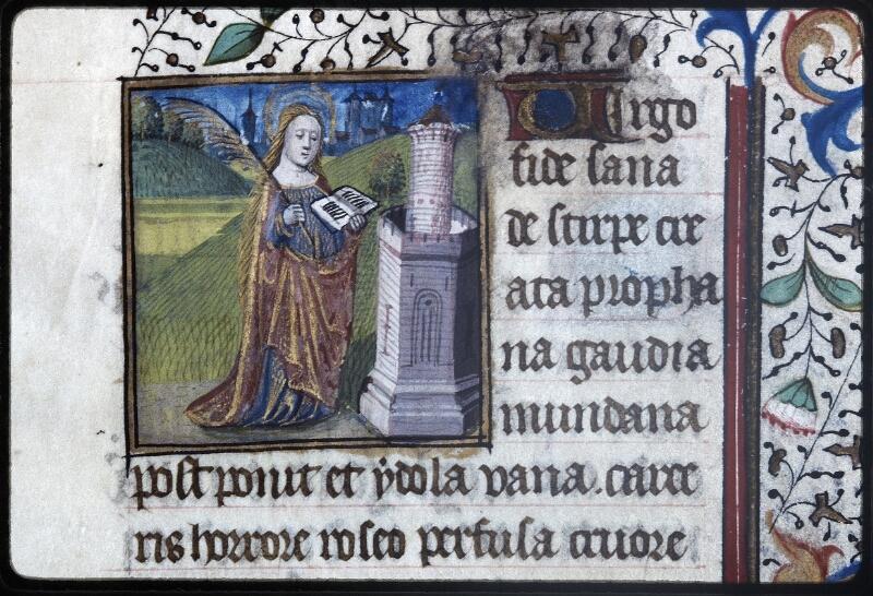 Lyon, Bibl. mun., ms. Palais des Arts 335, f. 113