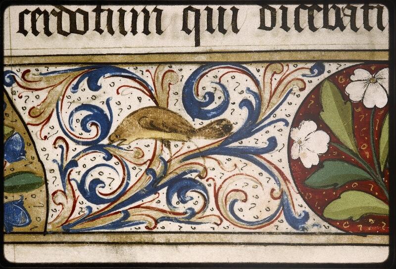 Lyon, Bibl. mun., ms. Palais des Arts 348, f. 002 - vue 6
