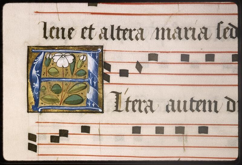 Lyon, Bibl. mun., ms. Palais des Arts 348, f. 019v - vue 2