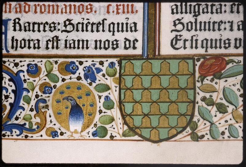 Lyon, Bibl. mun., inc. 0407, f. 011 - vue 5