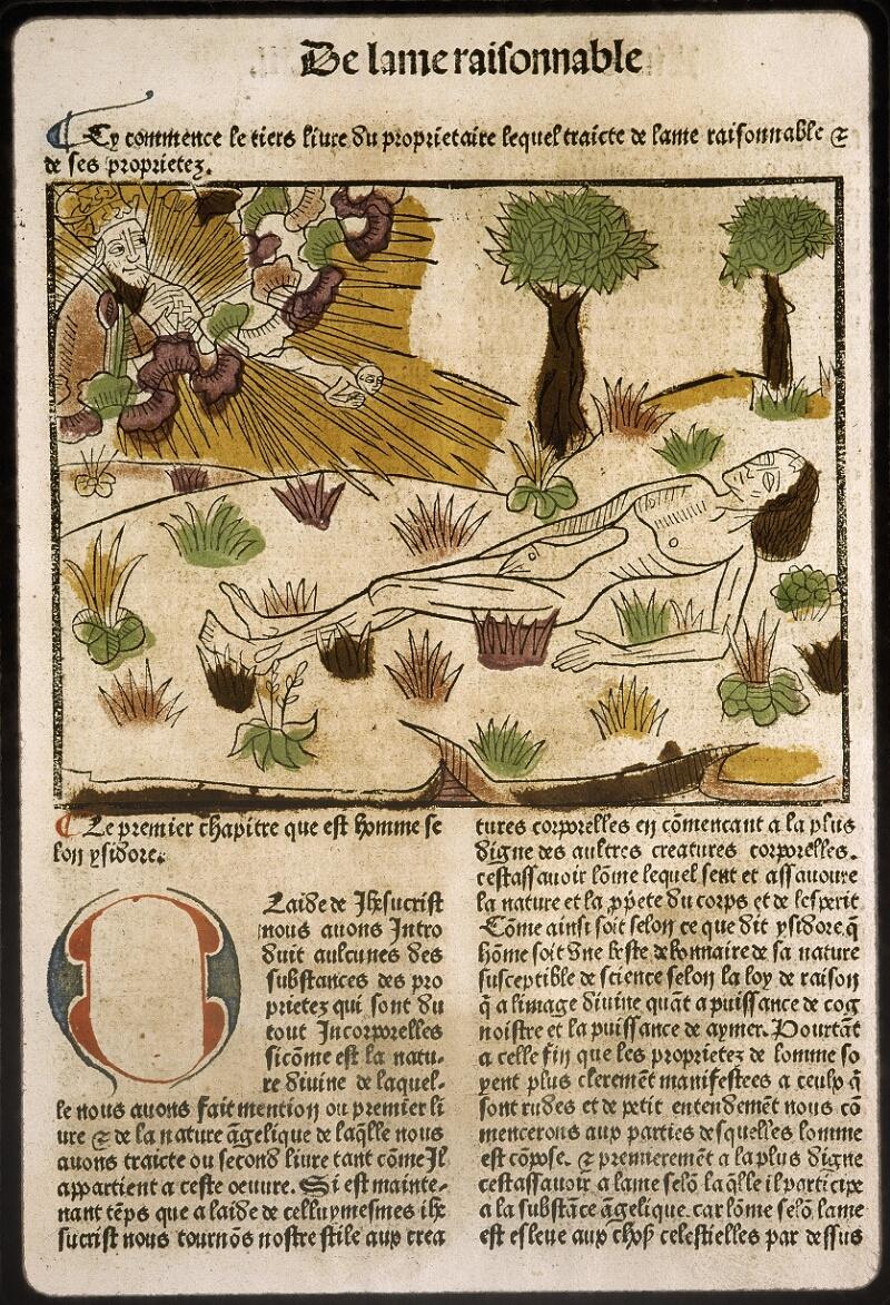 Lyon, Bibl. mun., inc. 0447, f. 0b 8