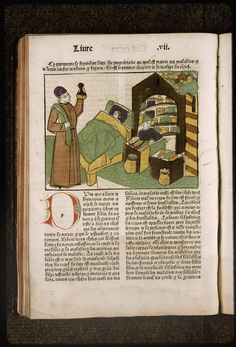 Lyon, Bibl. mun., inc. 0447, f. 0l 6v - vue 1