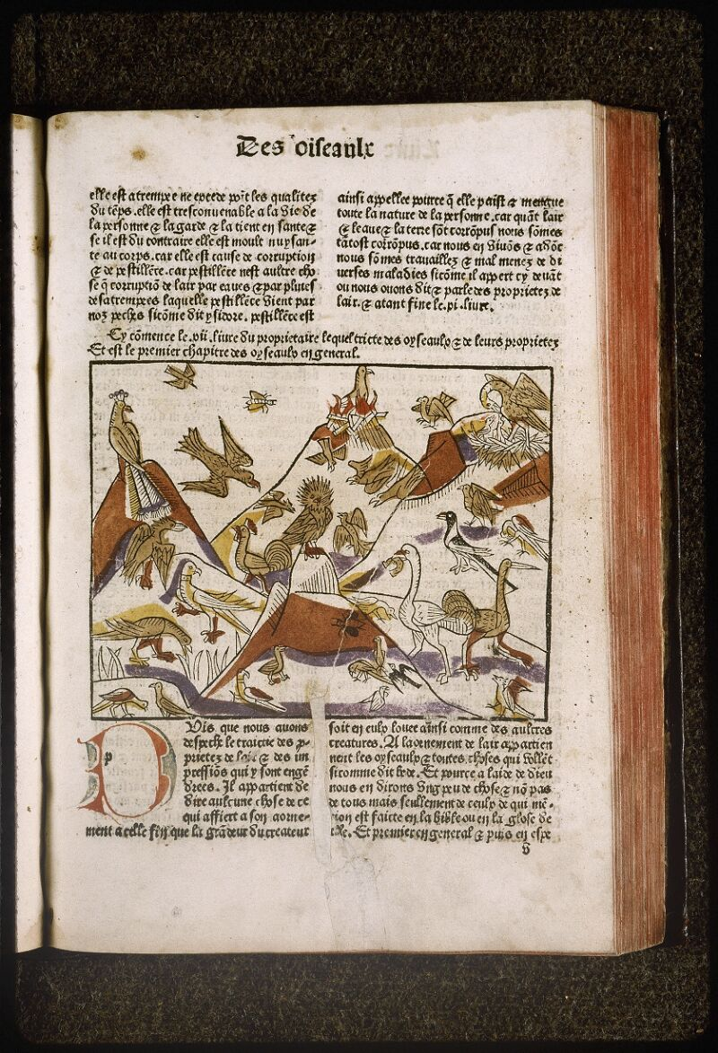Lyon, Bibl. mun., inc. 0447, f. 0v 1 - vue 1