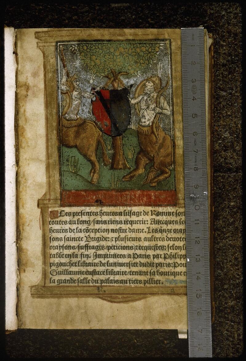 Lyon, Bibl. mun., inc. 0576, f. 001 - vue 1