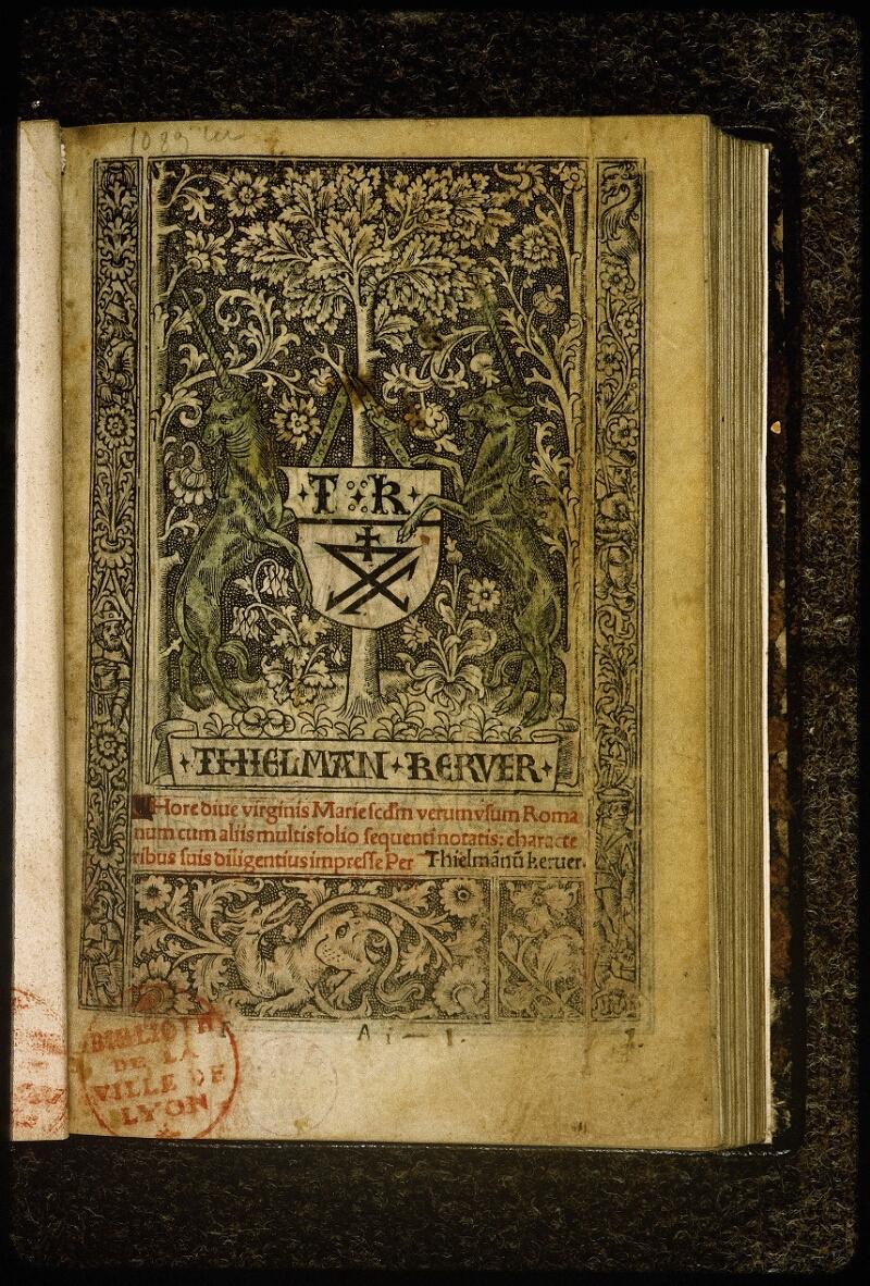 Lyon, Bibl. mun., inc. 0849, p. 001