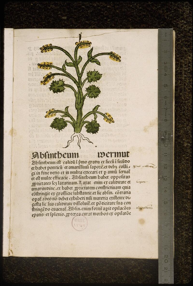 Lyon, Bibl. mun., inc. 0960, f. 004 - vue 1