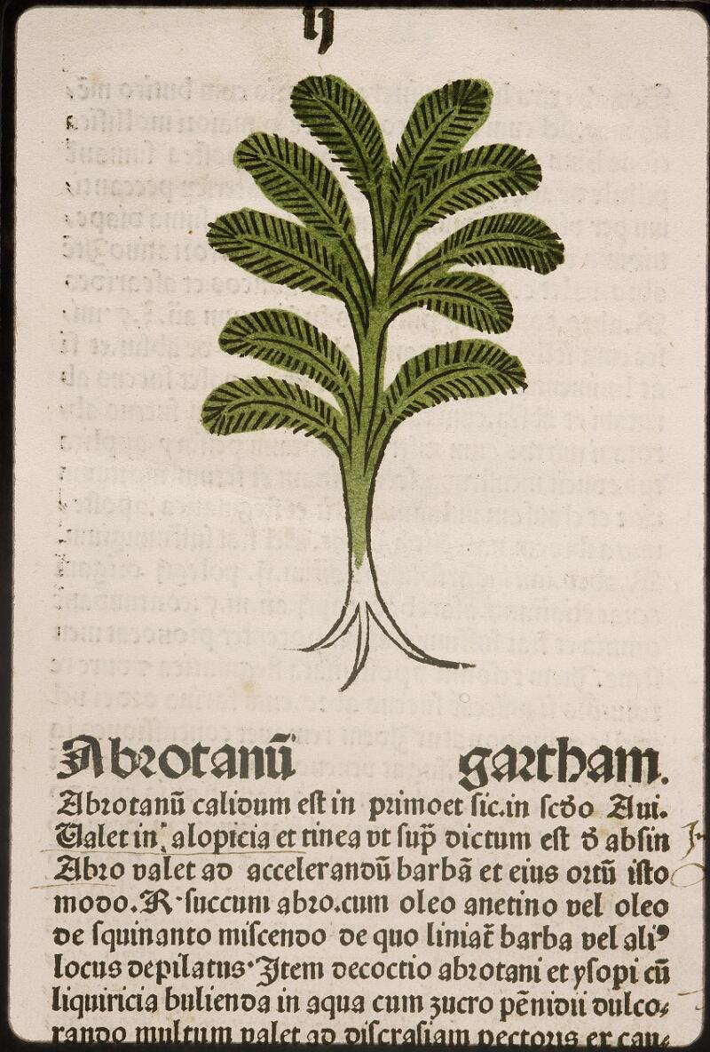 Lyon, Bibl. mun., inc. 0960, f. 005