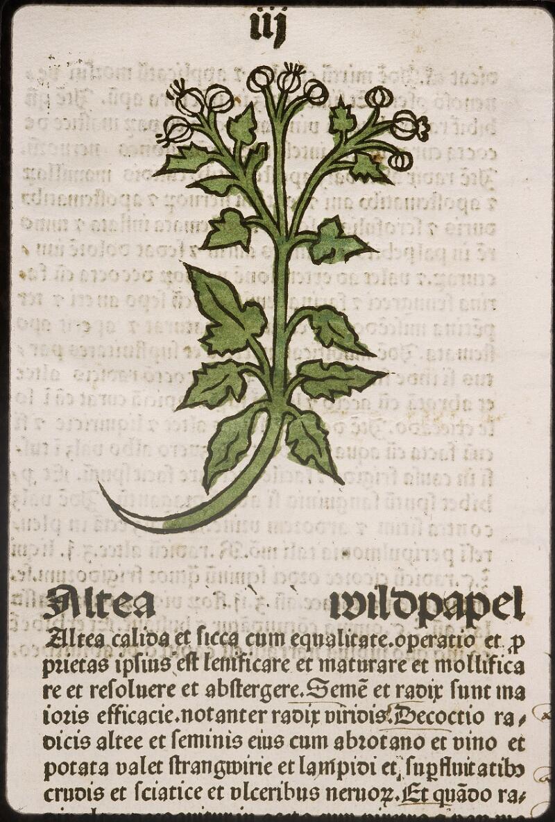 Lyon, Bibl. mun., inc. 0960, f. 006