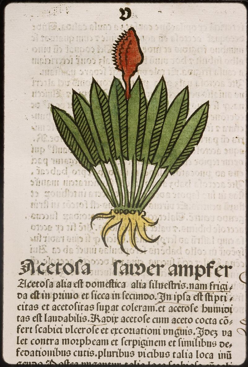 Lyon, Bibl. mun., inc. 0960, f. 008