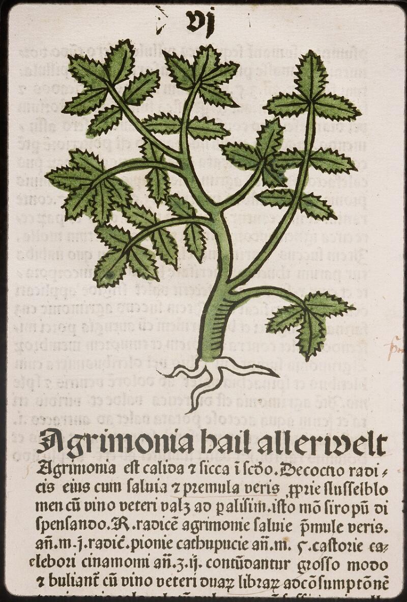 Lyon, Bibl. mun., inc. 0960, f. 009
