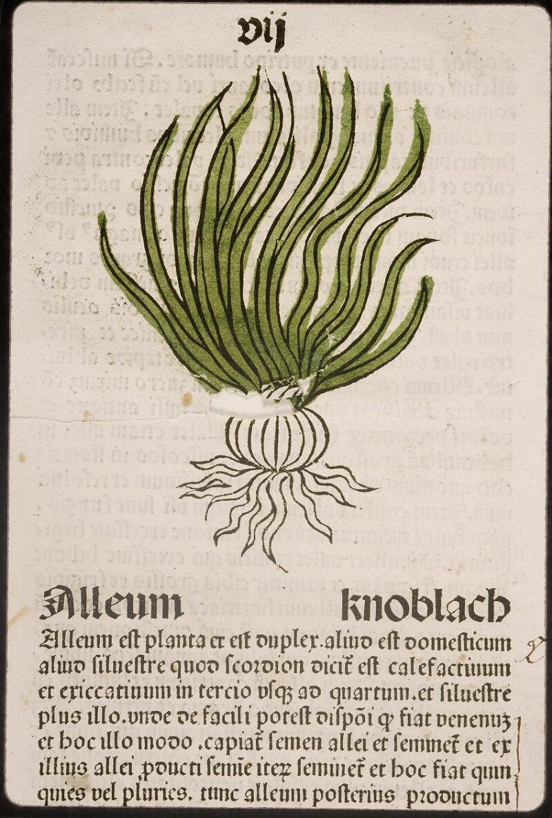 Lyon, Bibl. mun., inc. 0960, f. 010