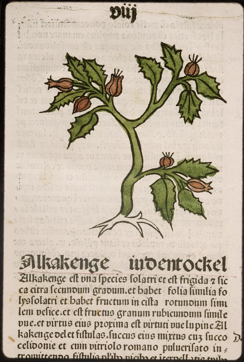 Lyon, Bibl. mun., inc. 0960, f. 011