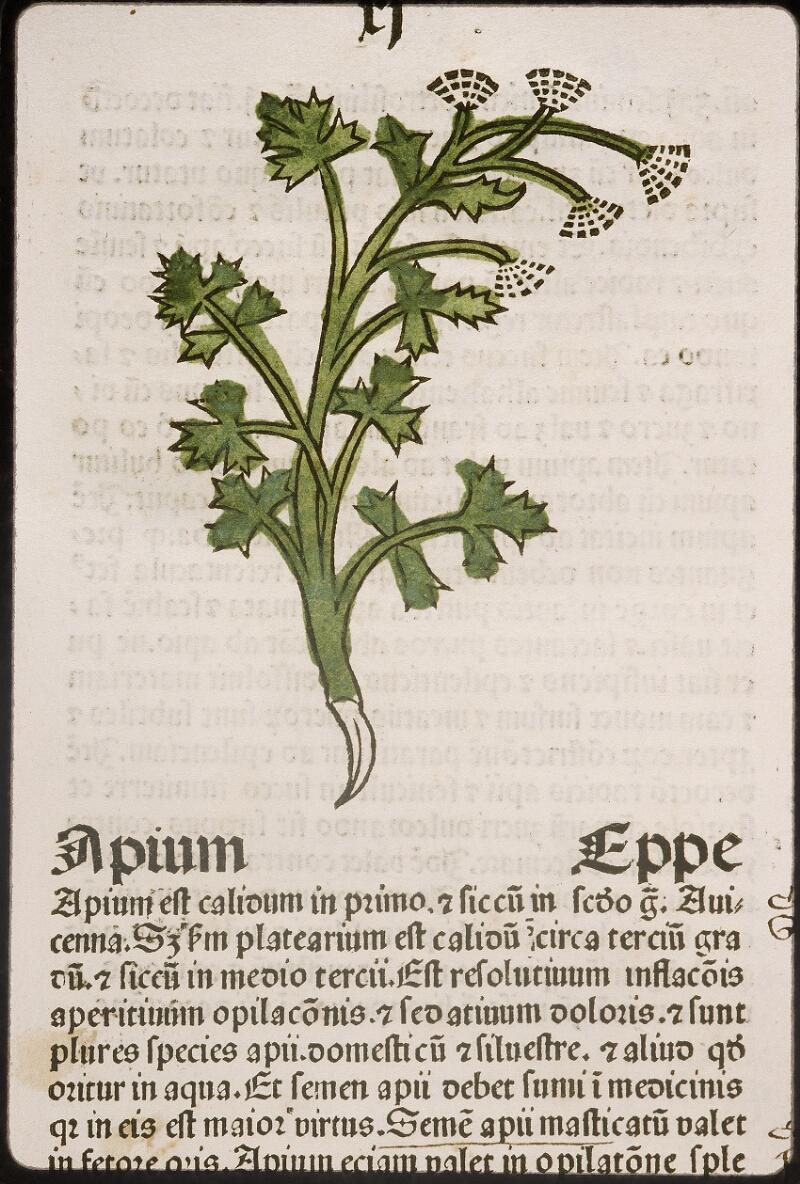Lyon, Bibl. mun., inc. 0960, f. 014