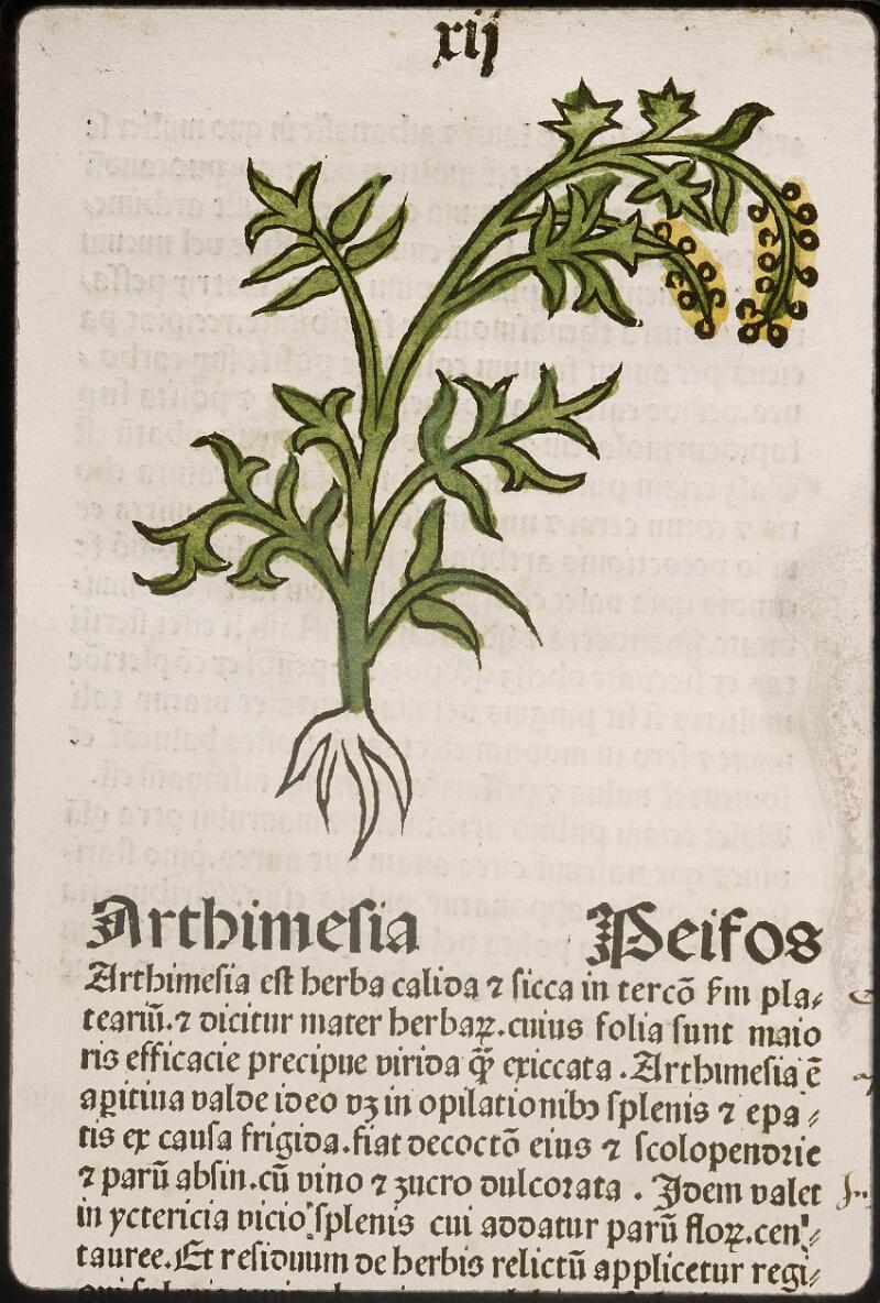 Lyon, Bibl. mun., inc. 0960, f. 015