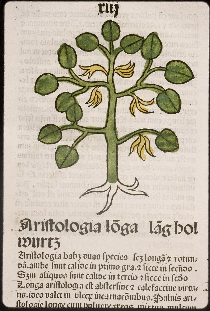 Lyon, Bibl. mun., inc. 0960, f. 016
