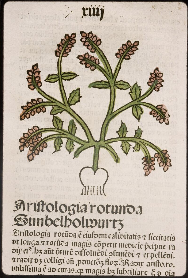 Lyon, Bibl. mun., inc. 0960, f. 017