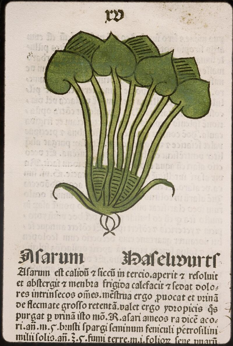 Lyon, Bibl. mun., inc. 0960, f. 018