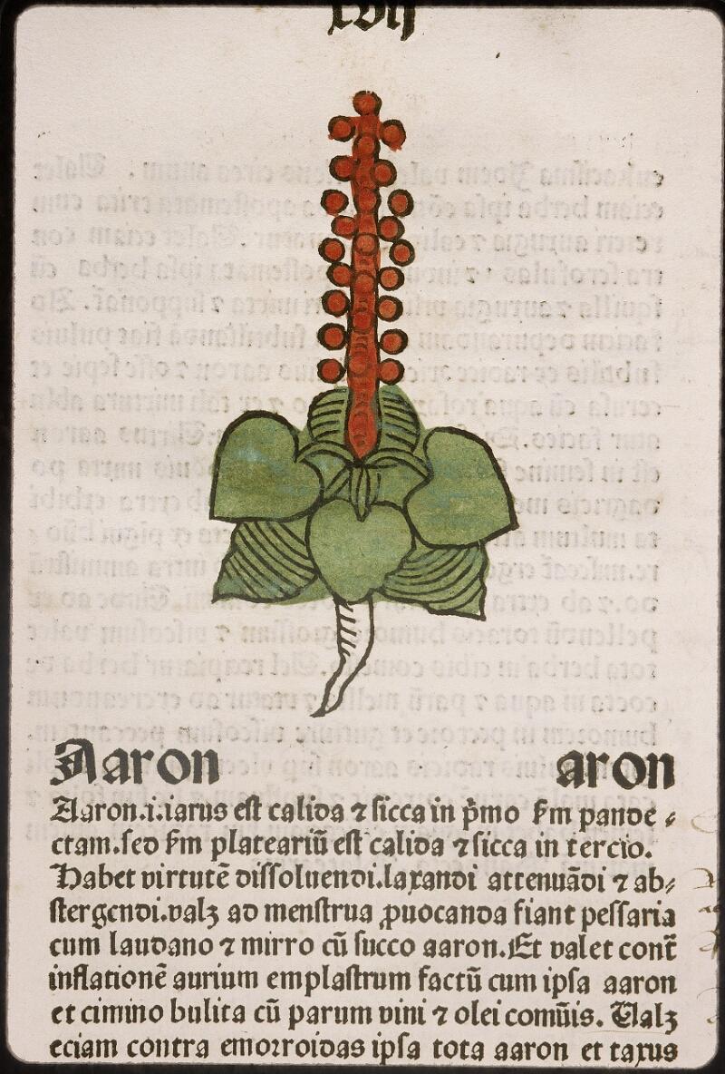 Lyon, Bibl. mun., inc. 0960, f. 020