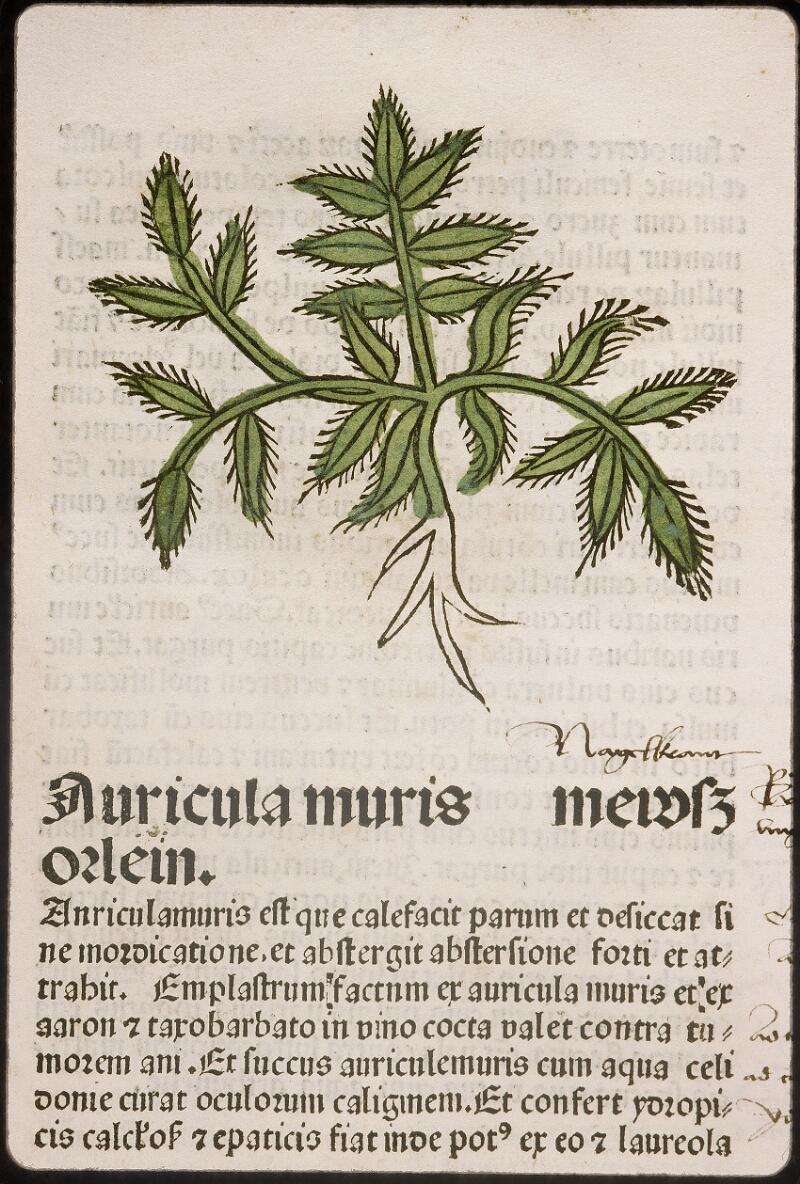 Lyon, Bibl. mun., inc. 0960, f. 021