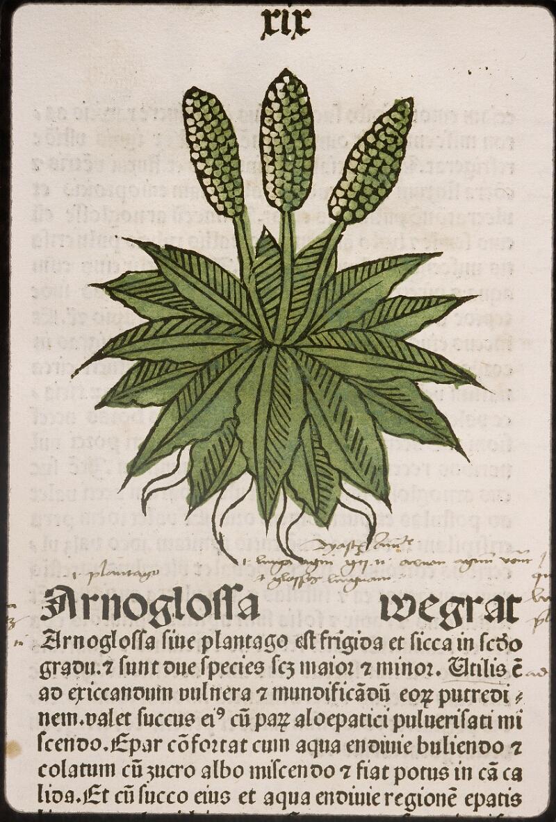 Lyon, Bibl. mun., inc. 0960, f. 022