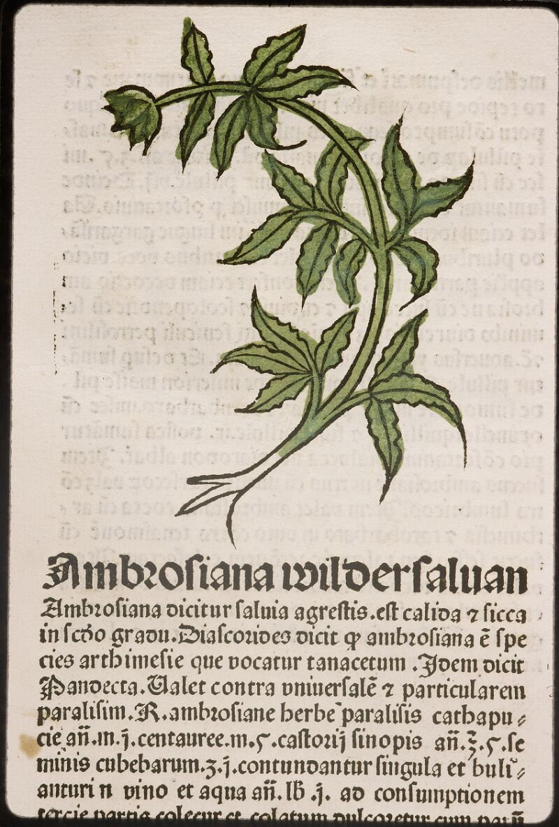 Lyon, Bibl. mun., inc. 0960, f. 023
