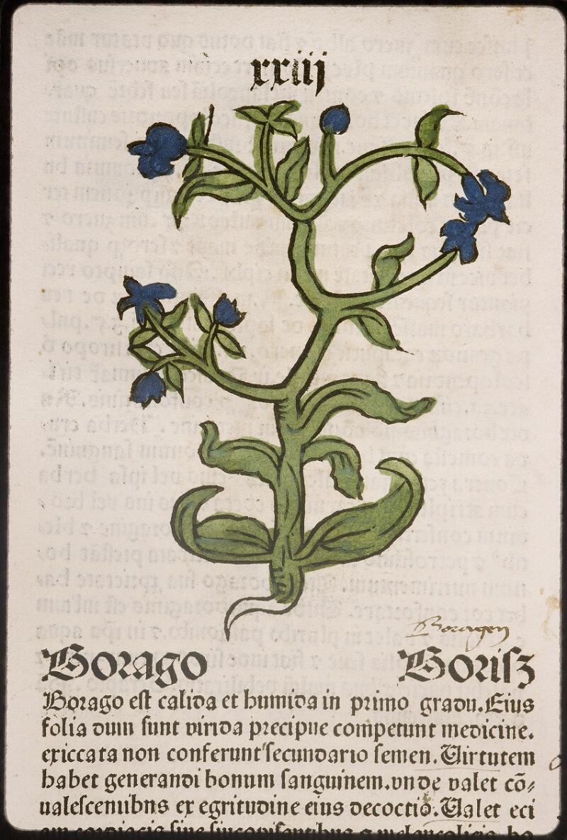 Lyon, Bibl. mun., inc. 0960, f. 026