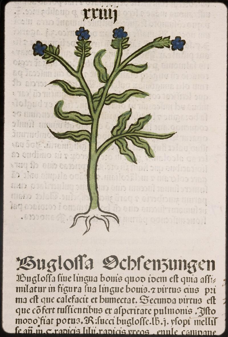 Lyon, Bibl. mun., inc. 0960, f. 027