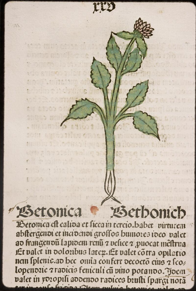 Lyon, Bibl. mun., inc. 0960, f. 028