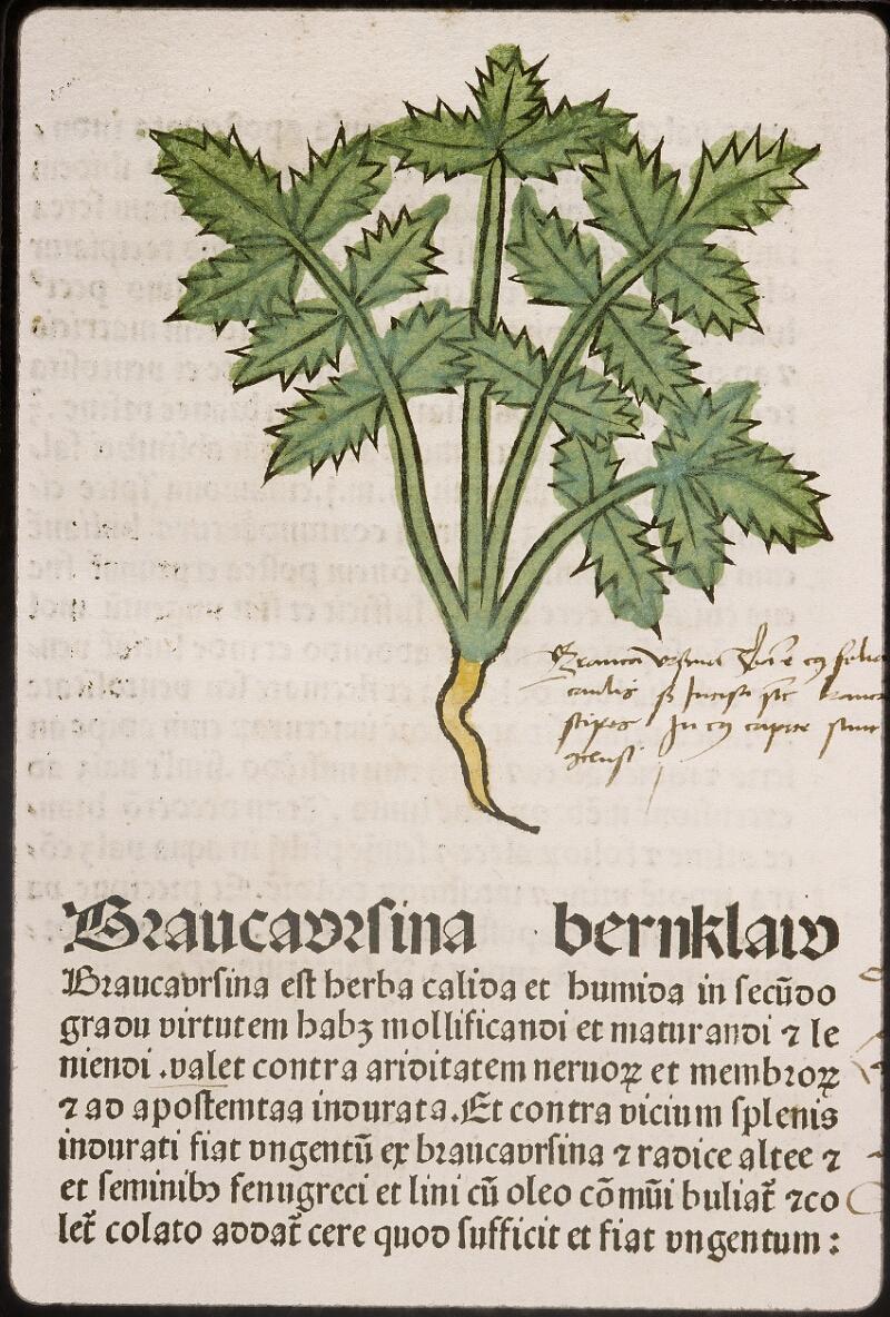 Lyon, Bibl. mun., inc. 0960, f. 029