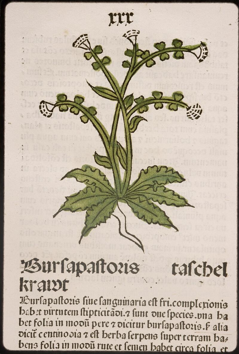 Lyon, Bibl. mun., inc. 0960, f. 031