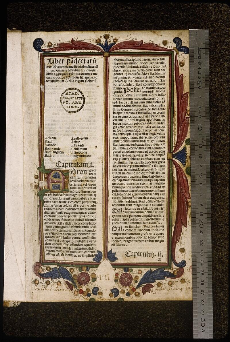 Lyon, Bibl. mun., inc. 1033, f. 001 - vue 1