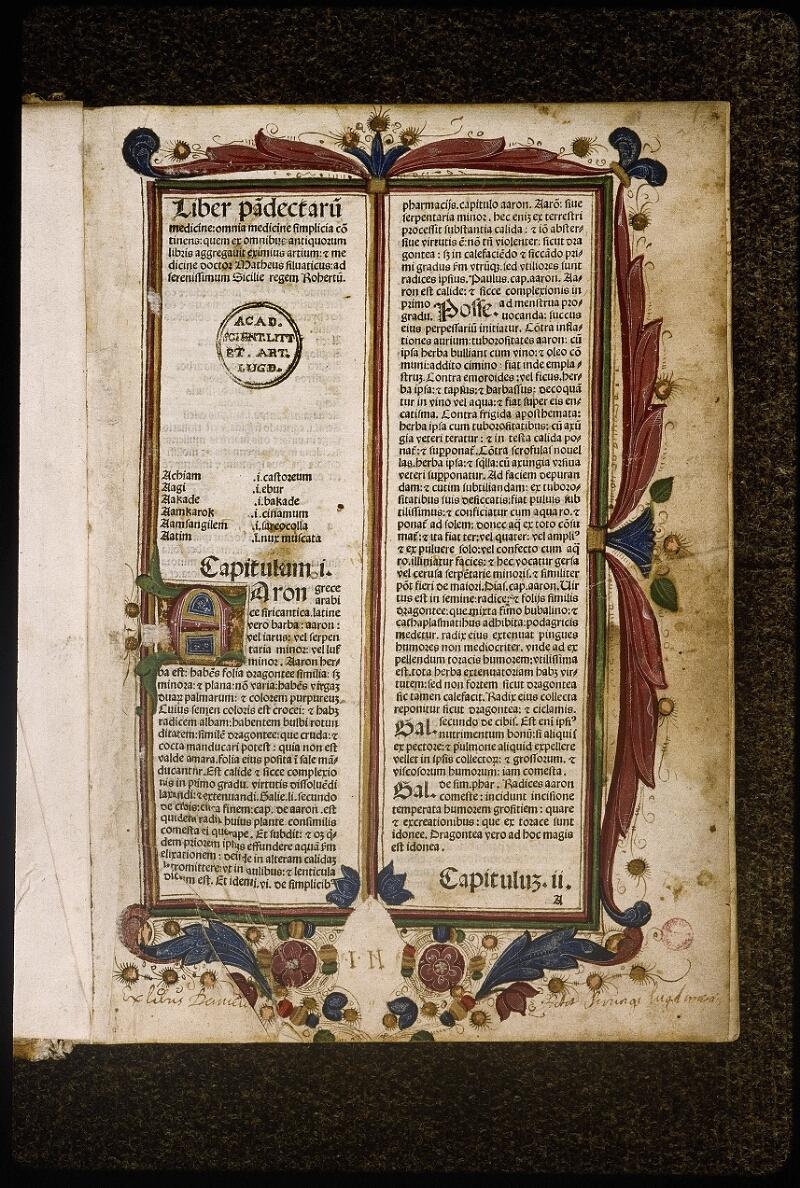 Lyon, Bibl. mun., inc. 1033, f. 001 - vue 2