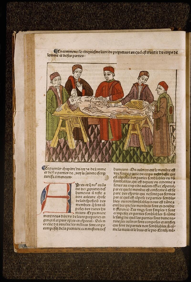 Lyon, Bibl. mun., inc. 1042, f. 044v - vue 1