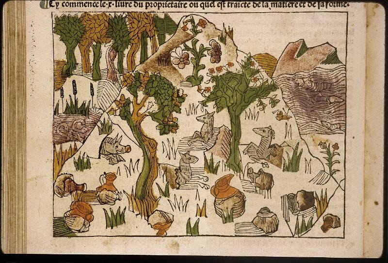 Lyon, Bibl. mun., inc. 1042, f. 145v