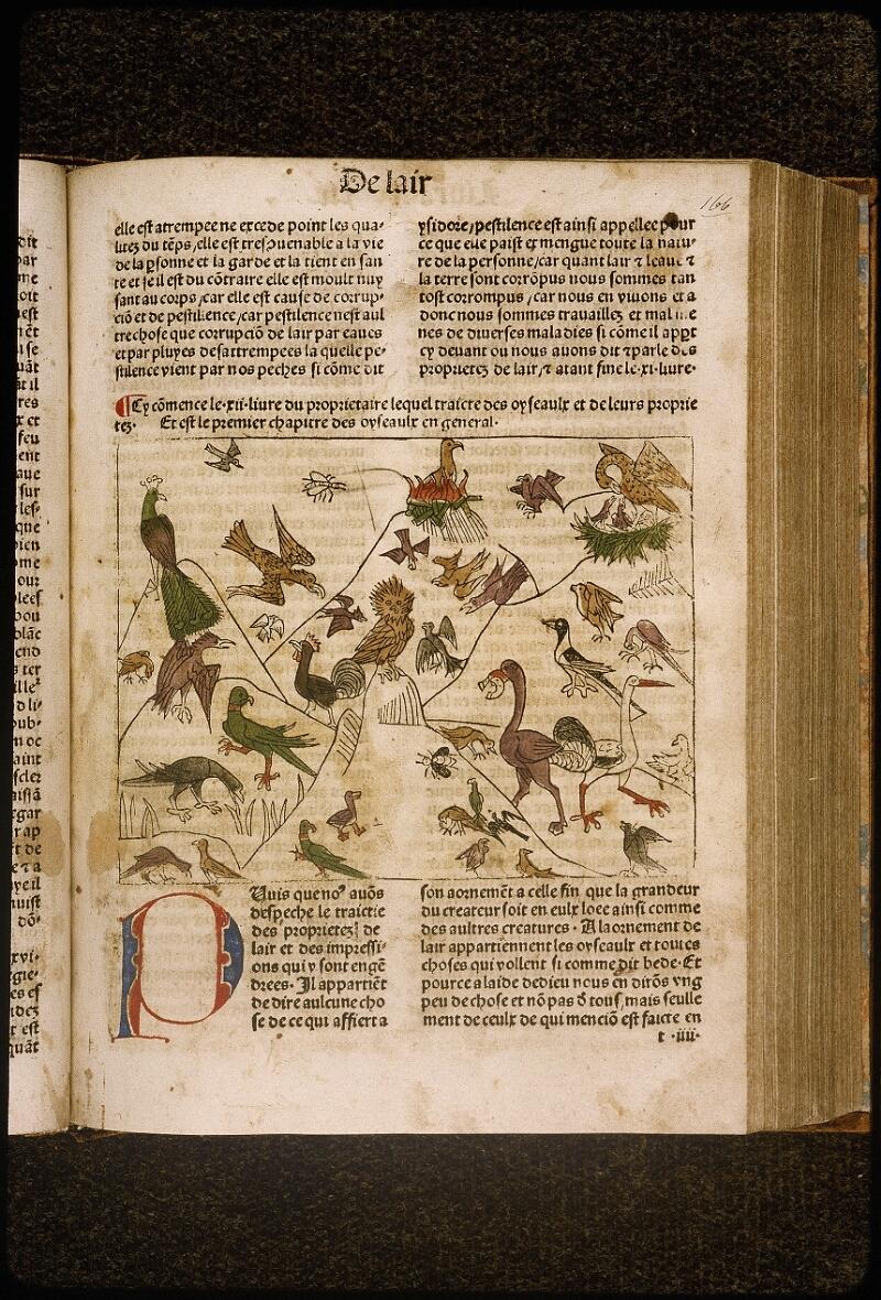 Lyon, Bibl. mun., inc. 1042, f. 166 - vue 1