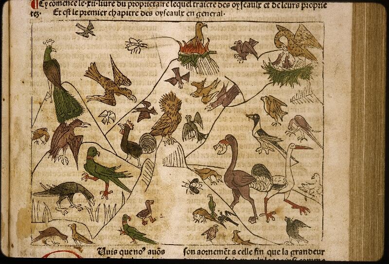 Lyon, Bibl. mun., inc. 1042, f. 166 - vue 2