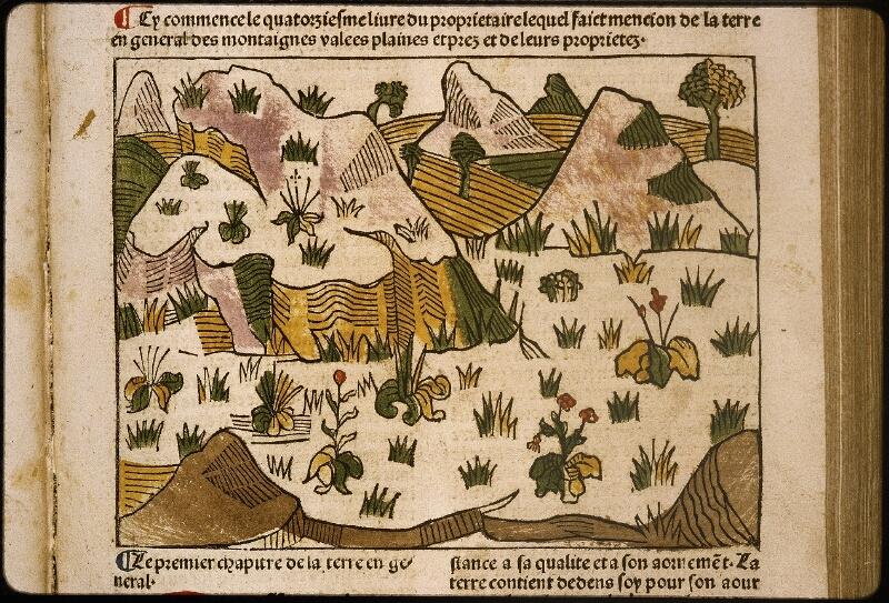 Lyon, Bibl. mun., inc. 1042, f. 187 - vue 2
