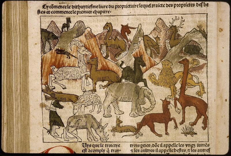 Lyon, Bibl. mun., inc. 1042, f. 278v