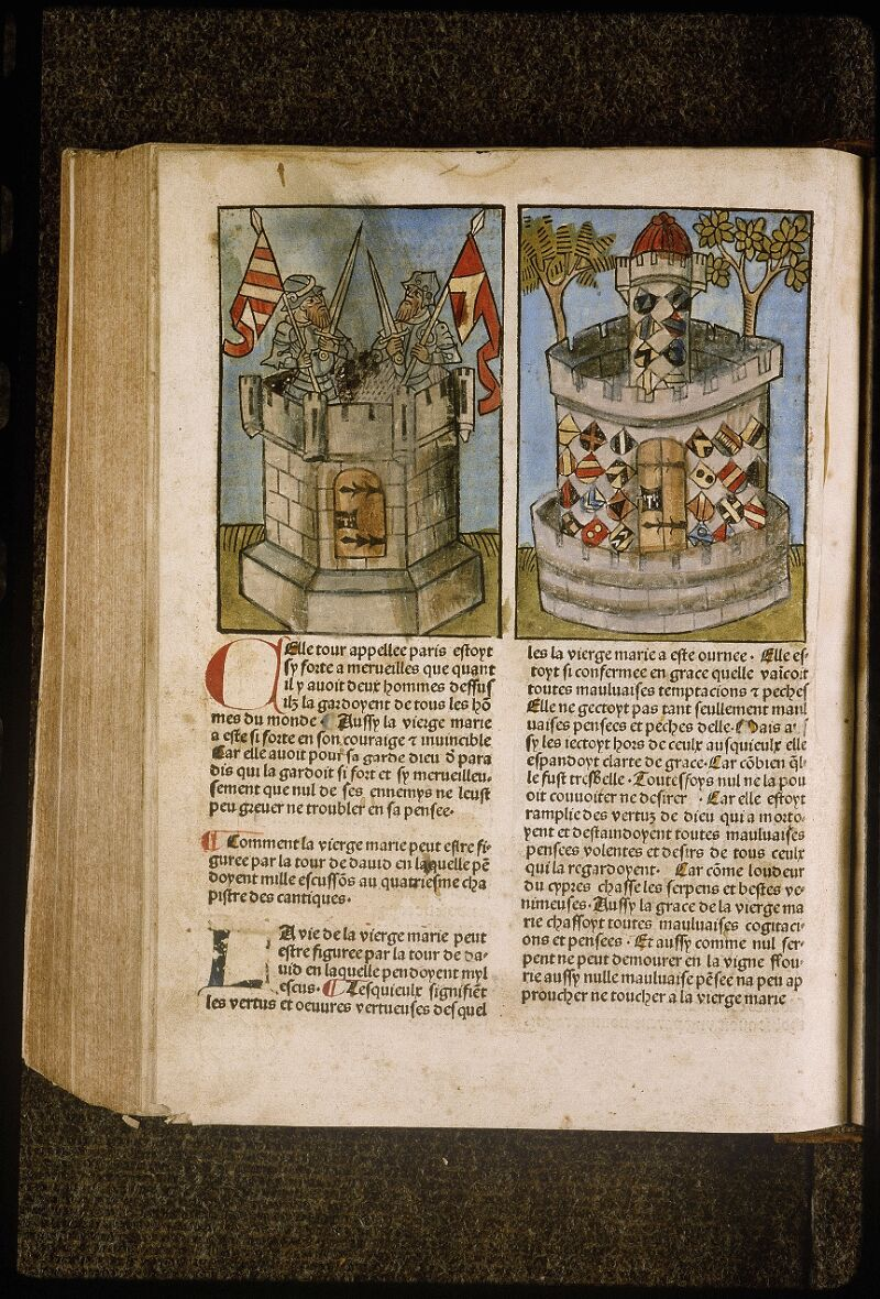 Lyon, Bibl. mun., inc. 1043, f. 344v - vue 1