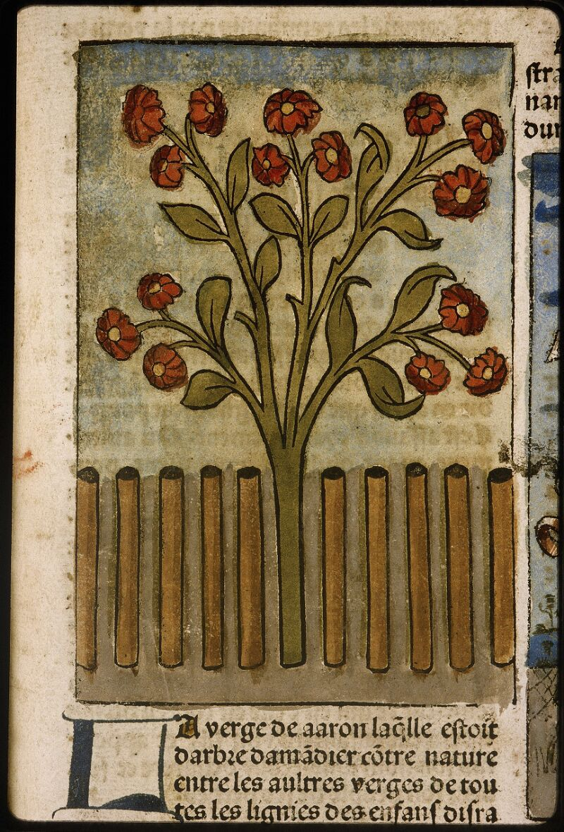 Lyon, Bibl. mun., inc. 1043, f. 349 - vue 2